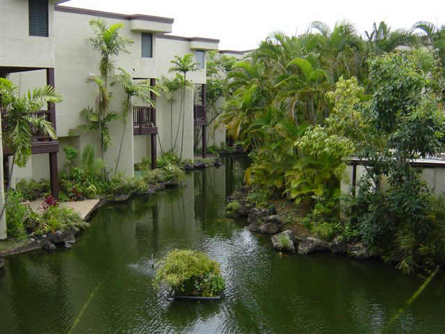 Puu Alii Phase Ii The Honolulu Hawaii State Condo Guide Com